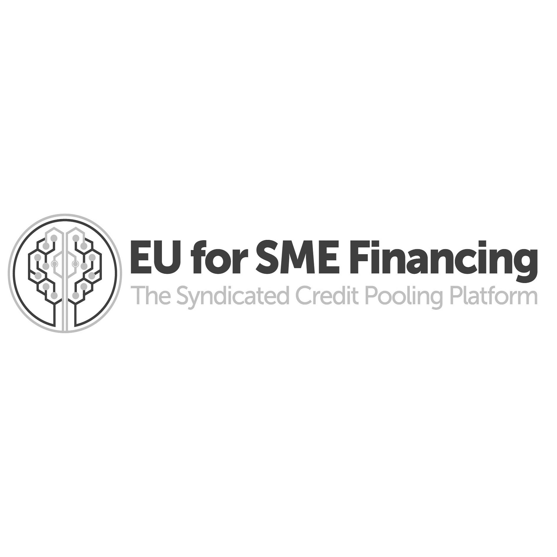 EU for SME